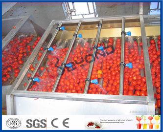Linha de processamento do tomate