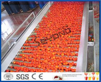 Tomate que planta a linha de processamento completamente do tomate da máquina/2 - 50 T/H semi automático